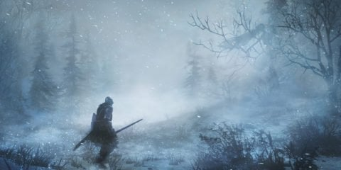 Dark Souls III Ashes of Ariandel wilderness