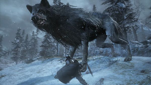 Dark Souls III Ashes of Ariandel wolf
