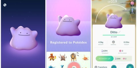 Pokemon GO Ditto triple