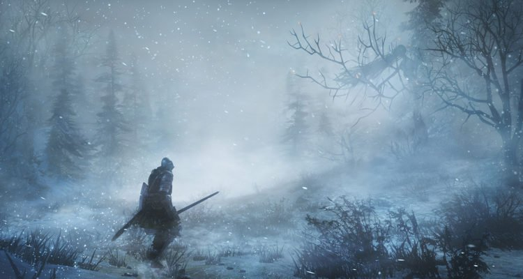 Dark Souls III Ashes of Ariandel wilderness